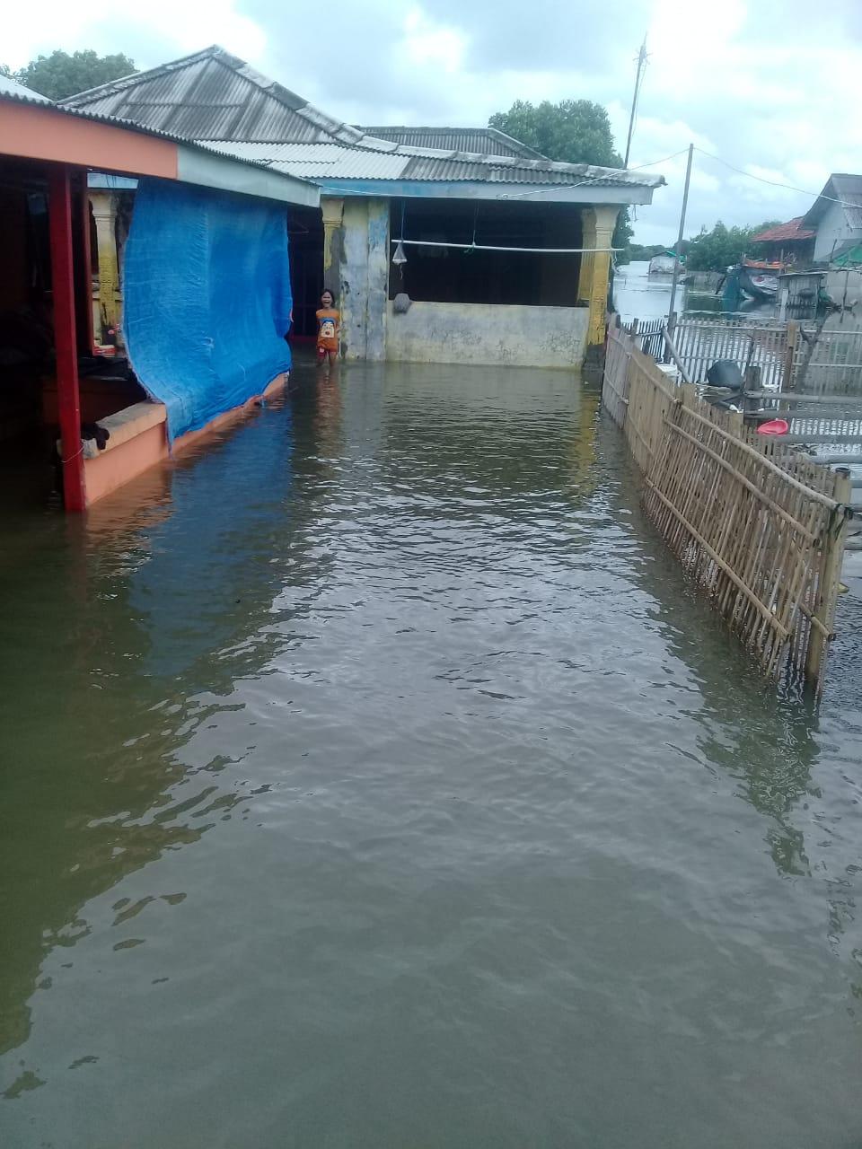 Ratusan Permukiman Warga di Kecamatan Muara Gembong Terendam Air Rob BEKASIMEDIA.COM   MEDIA BEKASI SEJAK 2014